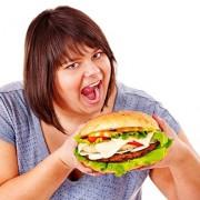 fissac _ ampk obesidad