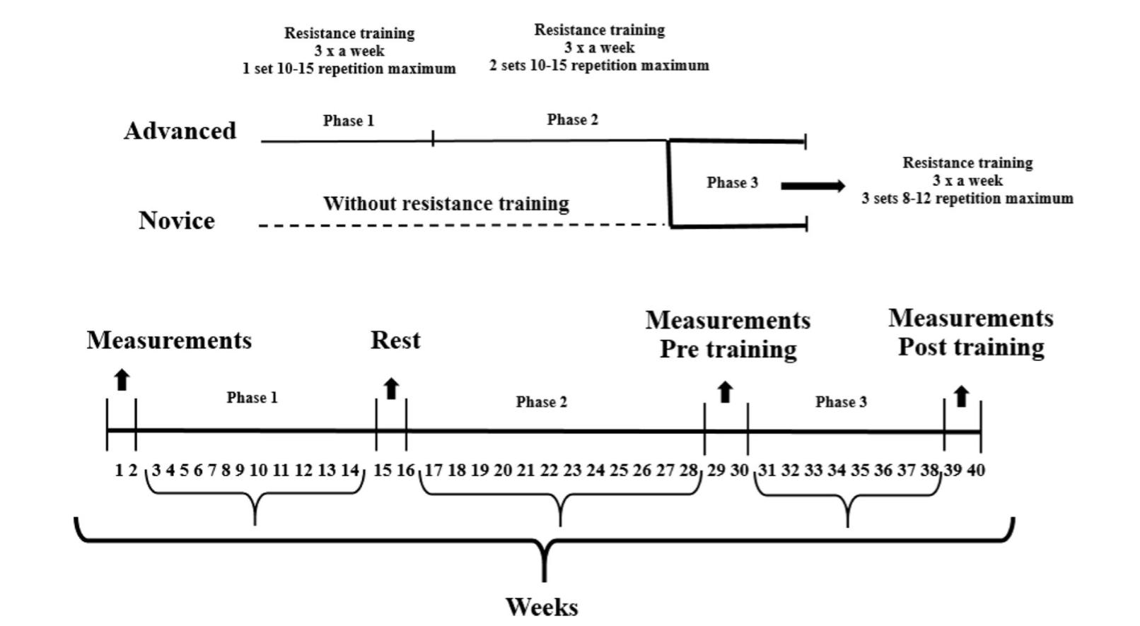 fissac _ entrenamiento fuerza, esquema estudio