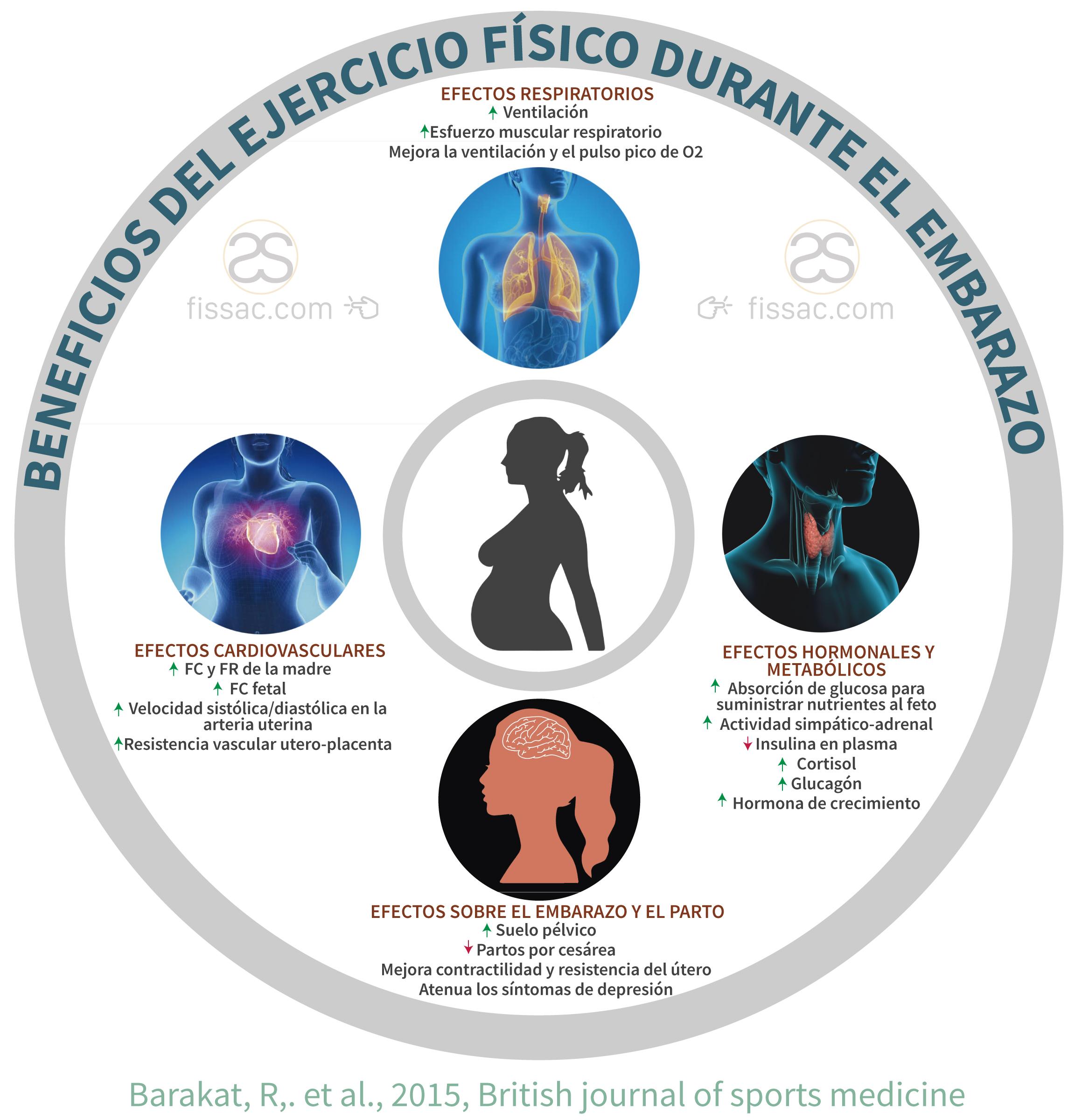 Beneficios y efectos del ejercicio fisico sobre la salud