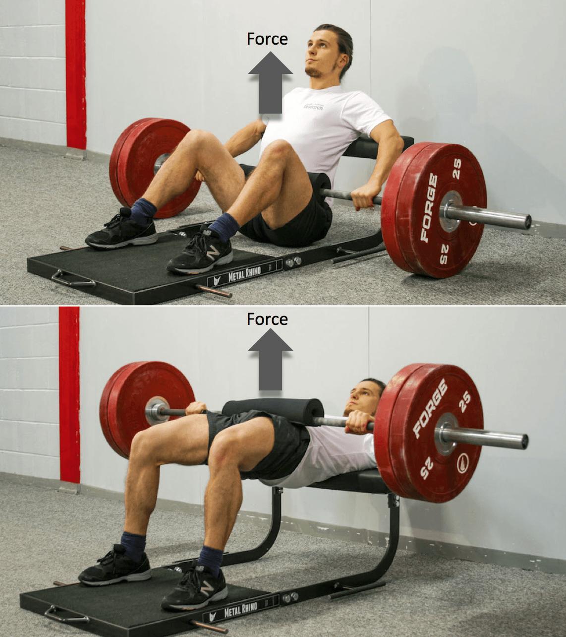 Hip-Thrust